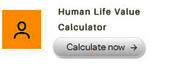 https://lifehappens.org/human-life-value-calculator/